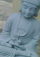 Somerset Buddha